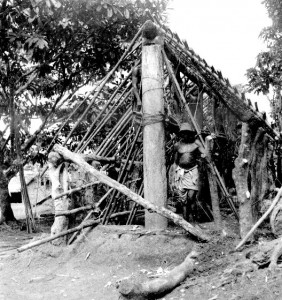 House under construction (southern Igbo)